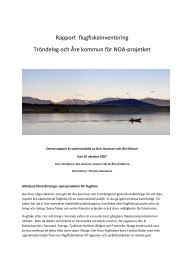 Rapport flugfiskeinventering Tröndelag och Åre kommun för NOA ...