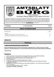 AMTSBLATT 38-2012.pdf - Stadt Burg