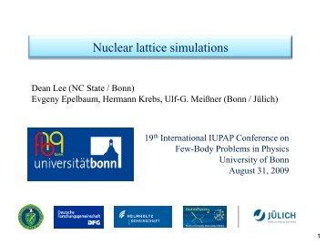Nuclear lattice simulations - FB19