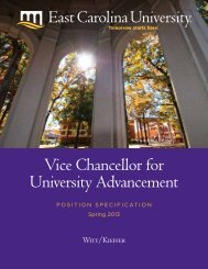 Vice Chancellor for University Advancement - Witt/Kieffer
