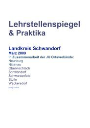 Lehrstellenspiegel & Praktika Landkreis Schwandorf März 2009 In ...