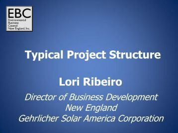 Typical Project Structure Lori Ribeiro - Environmental Business ...