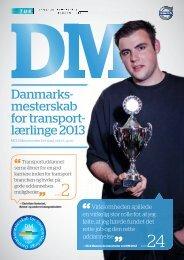 DM Magasin 2013