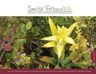 The David H. Smith Conservation Research Fellowship Program