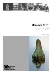 Hammar 9:21 Arkeologisk utredning 2008 - Regionmuseet ...