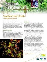 Sudden Oak Death - Purdue Plant and Pest Diagnostic Laboratory