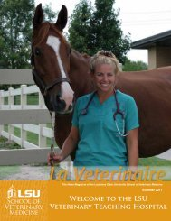 Welcome to the LSU Veterinary Teaching Hospital - School of ...
