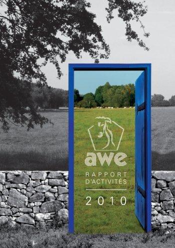 Rapport d'activité 2010 de l'Association Wallonne - AWE