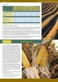 Toelichting bij de aangifte 2009 - Vlaamse Landmaatschappij - Page 7