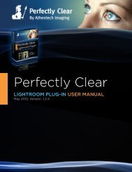 Perfectly Clear - Application Systems Heidelberg