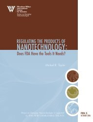 Regulating the Products of Nanotechnology - Project on Emerging ...