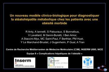 Un nouveau modèle clinico-biologique (le Nice Model) - Afef