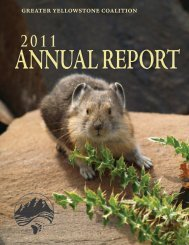FY11 Annual Report - Greater Yellowstone Coalition