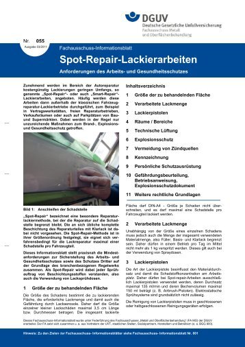 Spot Repair Lackierungen - Festool