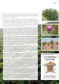 Número 3 - Ecologistas en Acción - Page 7