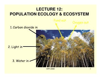 LECTURE 12: POPULATION ECOLOGY & ECOSYSTEM