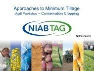 Approaches to Minimum Tillage - IAgrE