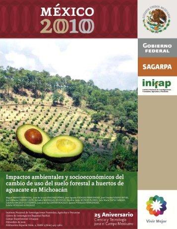 Impactos ambientales y socioeconómicos del cambio de uso ... - inifap