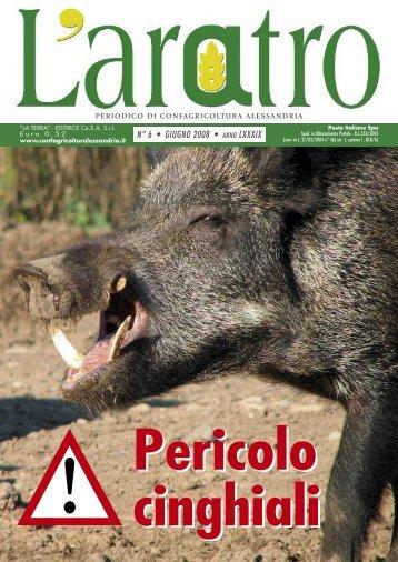 N° 6 • GIUGNO 2008 • ANNO LXXXIX - Confagricoltura Alessandria