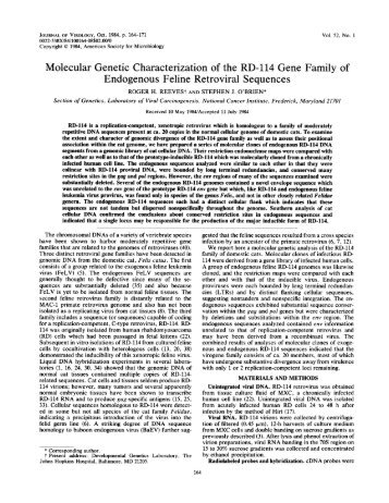 Molecular Genetic Characterization of the RD-114 Gene Family of ...