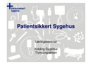 Team Tryksår - Sikker Patient