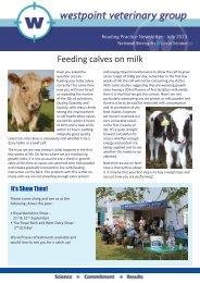 Feeding calves on milk - Westpoint Veterinary Group