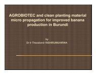 AGROBIOTEC and clean planting material micro propagation for ...