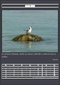 Kalender 2012 - Steinbock-Ferienwohnungen auf Usedom - Seite 5