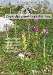 cliccare per aprire invito e locandina - GIROS - Gruppo Italiano per ...