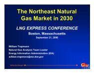 The Northeast Natural Gas Market in 2030