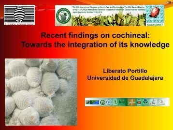 Recent findings on cochineal: Towards the integration of its knowledge