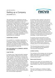 Setting up a Company - Nicva