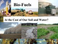 Biofuels – At the Cost of Our Water and Soil?