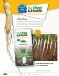 Tillage Radish® Resource Guide - Cover Crop Solutions - Page 4