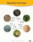 Tillage Radish® Resource Guide - Cover Crop Solutions - Page 5