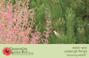 Attracting Wildlife - Conservation Garden Park