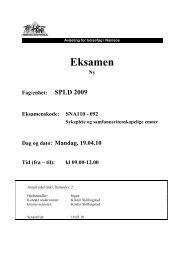 SNA110 - Sykepleie og samfunnsvitenskapelige emner - 19042010