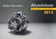 Mediadaten 2013_Umschlag.indd - Aluminium
