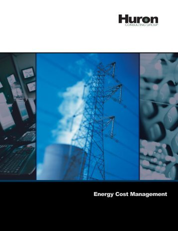 Energy Cost Management - Huron Consulting Group