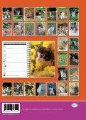 Katzen - Chats - Gatti - Page 2