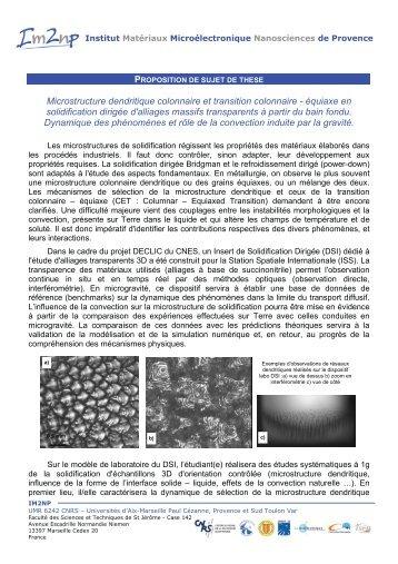 Microstructure dendritique colonnaire et transition ... - IM2NP