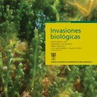 Sans, Caño, Green, 2008