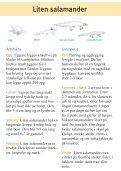 Amfibier i Alnaparken - Page 4