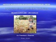 PP14_Presentacion INETER-Nicaragua ... - cazalac