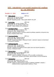 SZZ - bakalářské a navazující magisterské studium ak. rok 2010/2011