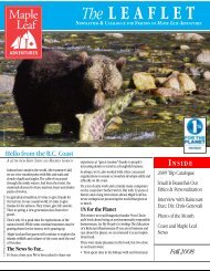 2008 Fall Newsletter and Catalog - Maple Leaf Adventures