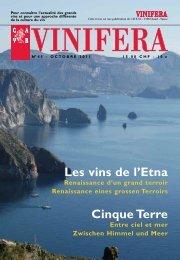 Les vins de l'Etna Cinque Terre - Cave SA