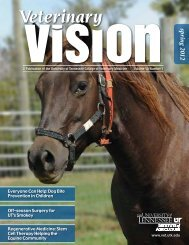 spring 2012 - The University of Tennessee College of Veterinary ...