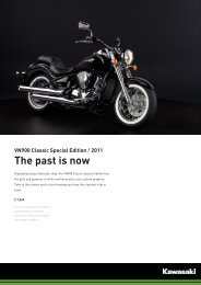 VN900 Classic Special Edition / 2011 The past is now
