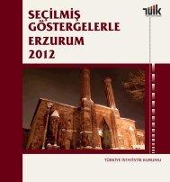 ERZURUM - Türkiye İstatistik Kurumu